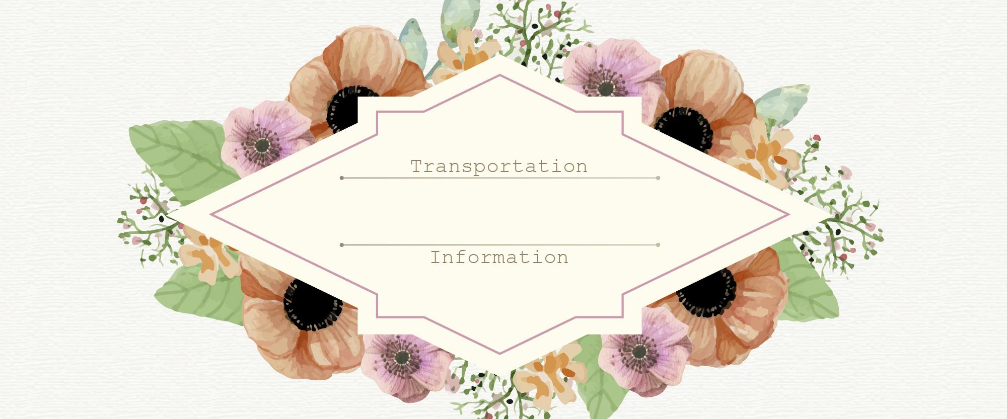 TRANSPORTATION-INFO